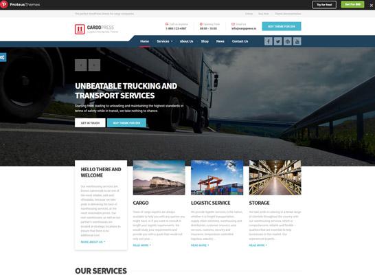 Web Design & Development Services in Fremont   WebV9